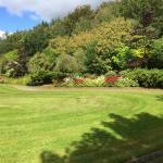 Millstreet Country Park Aufnahme