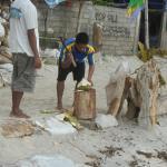 кокосы чистят