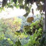 Foto de Borgo di Carpiano