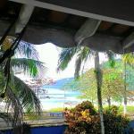Foto de Tropical Dolphin