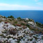 Foto di Parco Naturale Regionale Costa Otranto