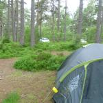 Car Parking for our camp