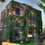 Portobello Ristorante - garden