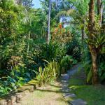 4500m2 de Jardim Tropical