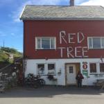 Photo de Red Tree B&B