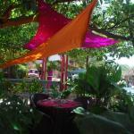 Photo of Le Jardin des Envies