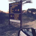 Signs get you to Skukuza
