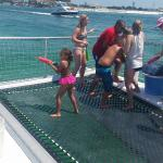 Hula hooping, snorkeling, and dolphin watching.