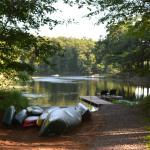 Foto de Canoe Bay