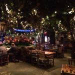 Rainforest cafe in Menlo Park Mall