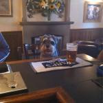Max the pub's favourite local!