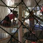 Laberinto de platos y redes, de 3 pisos de altura, con muchas salidas.