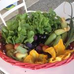 Foto de Agriturismo Siena Rinidia Bio