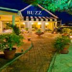 Buzz - St Lucia