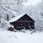 Sapphire Cabin
