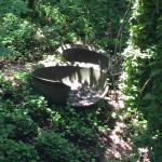 Bull Shoals Caverns Foto