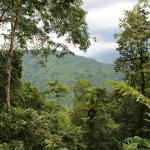 On the edge of Carara National Park