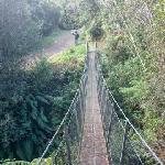 Mangaone Walkway