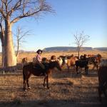 Sunset ride on Rita - a real treat!