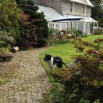 Garden facing
