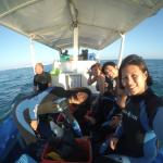 On the way to Dive!