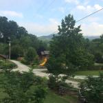 View from front porch of cabin