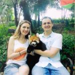 red panda)