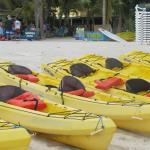 The kayaks we used
