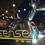 Sense of the Sea