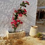 Photo of Masserie Maresca