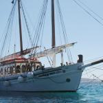 Dolphins of Delos boat