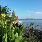 Insel Mainau und Blick auf Meersburg