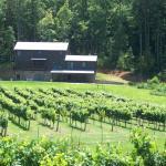 Photo de Stonewall Creek Vineyards