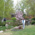 Beautiful garden in the springtime