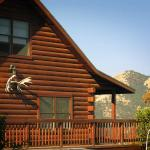 The Log House Lodge resmi