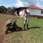 Visit to Tom the Tortoise