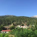 Φωτογραφία: Konstantinos Apartments