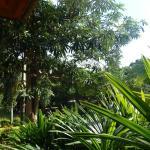 Photo of La Mer Samui Resort