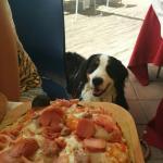 Il nostro cane era ben accetto!pizza buonissima
