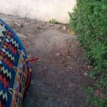 vue d'ensemble de la propreté / qualité du sol.