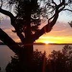 Foto de Sunset Marine Resort