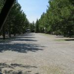 View out to rest of campground from site #19 (straight back-in)
