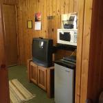 Microwave, fridge, TV in living suite
