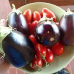 Piccolo raccolto delle buonissime verdure a disposizione dei clienti