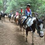 Yosemite Trails Saddle & Sleigh Company