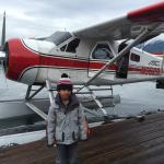Amazing flight and bear viewing at Traitor's Cove