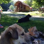 Boone KOA Campground Foto