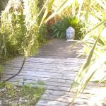 Entrée du clos des bambous