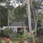Koppie Alleen Guest House