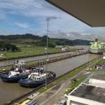 The Panams Photo